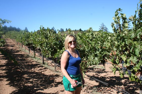 #pickinggrapes #harveststomp #schweigervineyards