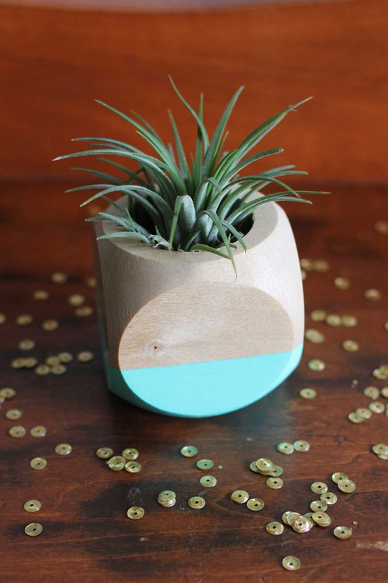 air plant centerpiece ideas http://www.weddingchicks.com/2013/09/13/mint-and-gold-wedding-ideas/