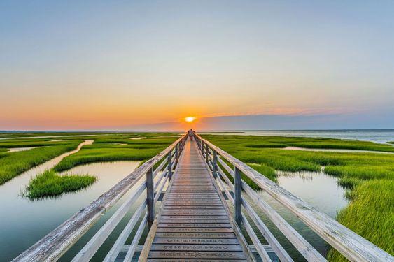 Cape Cod Landscapes