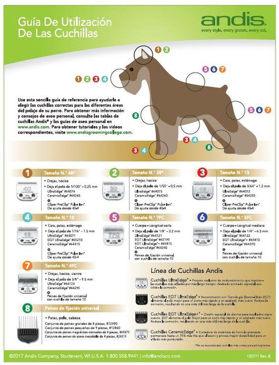 Andis Product Documentation Cosas Para Perros Perros Pelaje