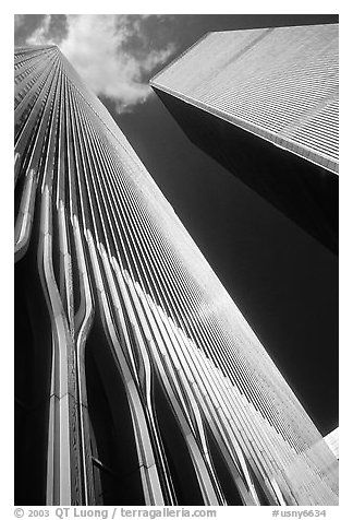 Looking up the World Trade Center. NYC, New York, USA -Photography of QT Luong