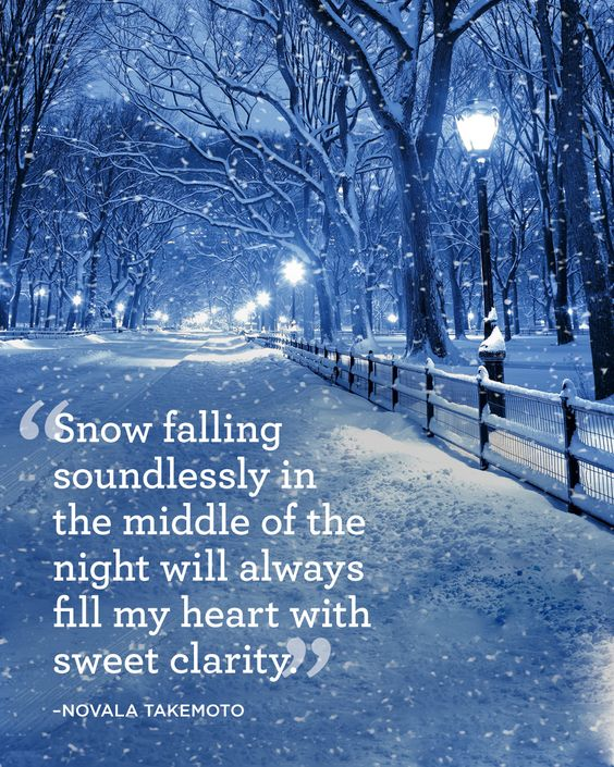 """Snow falling soundlessly in the middle of the night will always fill my heart with sweet clarity."":"