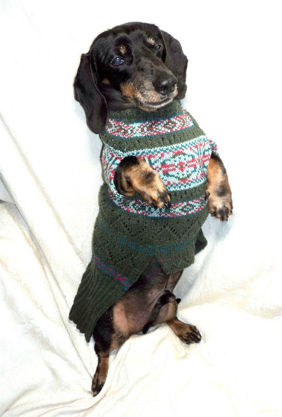 Silk Christmas dachshund jumper.