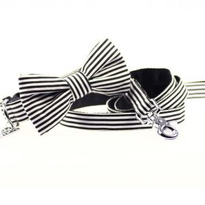 Black & White Striped Bow Tie Collar and Leash | via DHARF