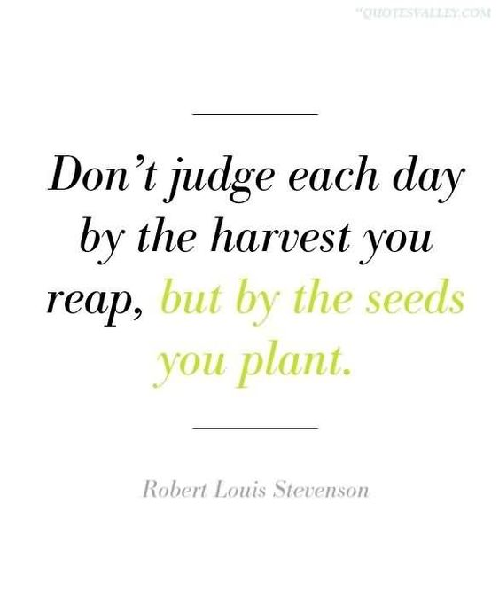 Don't Judge Each Day By The Harvest You Reap, But By The Seeds You Plant