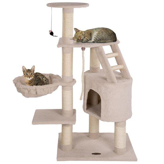 Kratzbaum Grosse Katzen