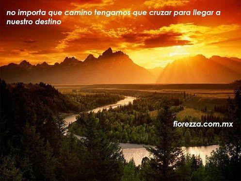 Floreria Fiorezza - Google+