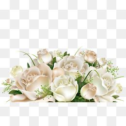 A Bunch Of White Flowers Free Watercolor Flowers White Rose Png Flower Png Images