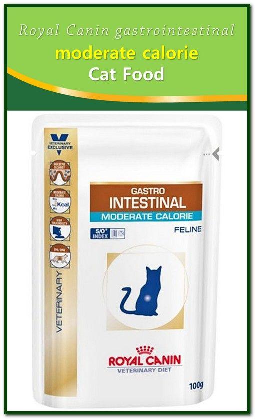 Royal Canin Gastrointestinal Moderate Calorie Cat Food Sensitive Stomach Cat Food Cat Food Calorie