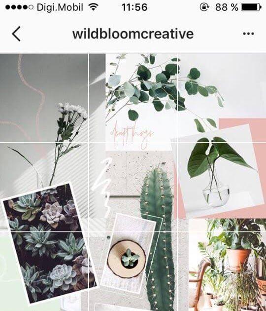 Terpopuler 30 Gambar Keren Untuk Feed Instagram Di 2020 Dengan