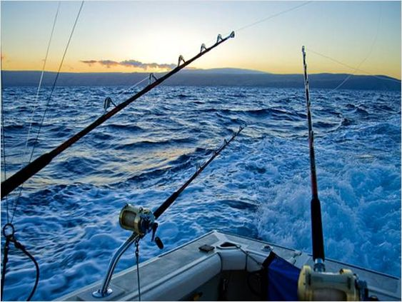 Salt water fishing games activities that i love for Salt water fishing boats