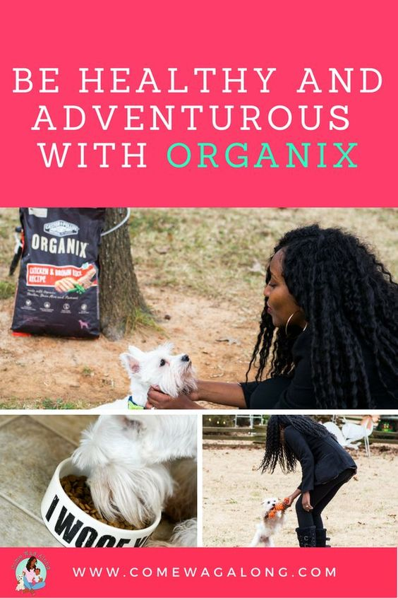 Get healthy and adventurous with your dog!  Read all about our adventure and learn more about the #organic dog food ORGANIX! #OrganicPet #ad