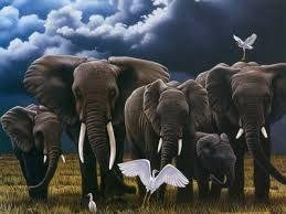 Resultado de imagen para pinturas de elefantes