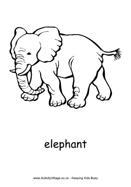 Colouring Pages Elephants And Page 3 On Pinterest