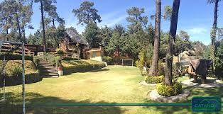 espectacular salon jardin - Buscar con Google