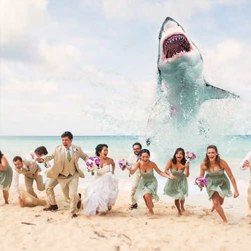 Wedding Photo idea!!! So perfect for me I really want a beach wedding and this would be hilarious!!!: