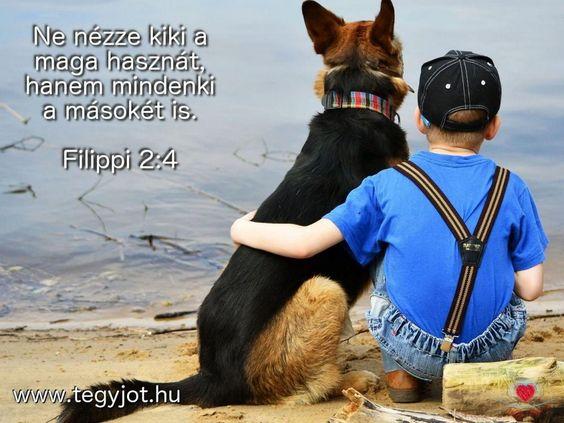 """""""Ne nézze kiki a maga hasznát, hanem mindenki a másokét is.""""  (Filippi 2.4)"""