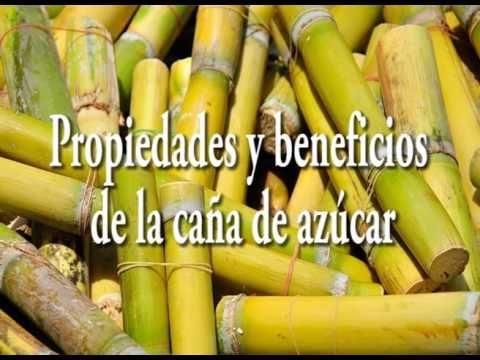 Propiedades Y Beneficios De La Caña De Azúcar Youtube Caña De Azucar Tipos De Bebida Guarapo