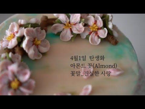 4월1일 탄생화 아몬드꽃 Almond Flower Piping Technique Youtube 진실한 사랑 꽃말 사랑
