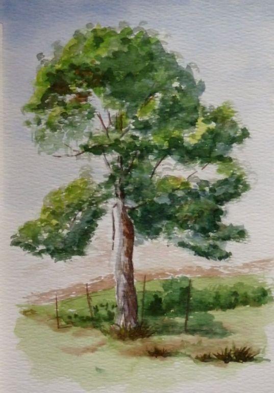 Pin Von Sergej Kutin Auf Risovanie Eskizov Baummalerei Aquarell