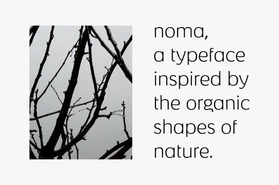 Noma | Kontrapunkt