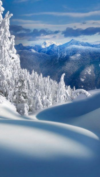 Download Winter Wallpaper For Iphone Free Winter Wallpaper Winter Landscape Winter Scenery