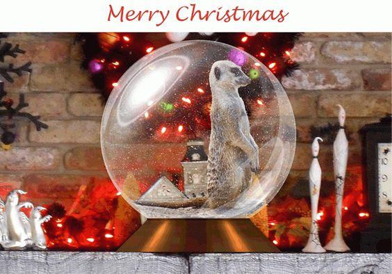 Merry Christmas To You | Alma Schouman's blog