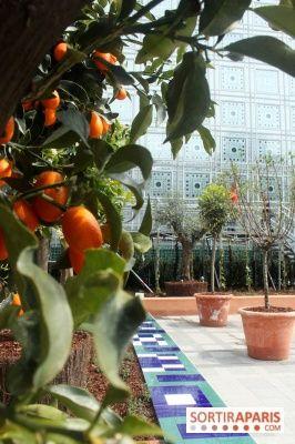 Jardin d'Orient à l'Institut du Monde Arabe