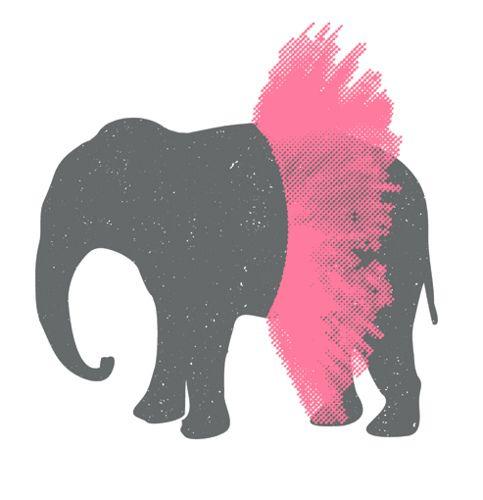 Elephant in tutu.