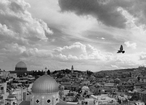 Tour Papacapim na Palestina - 2017