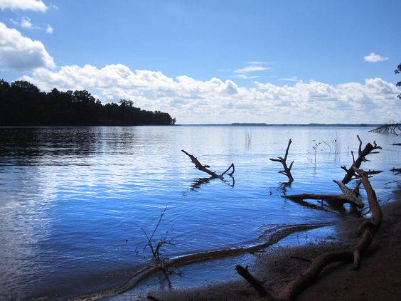 Sadlers creek state park sits on a peninsula overlooking for Lake hartwell fishing hot spots