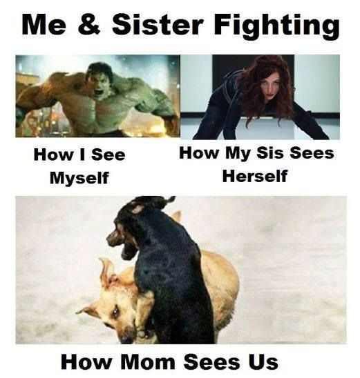 Cute Funny Quotes About Sisters Fighting