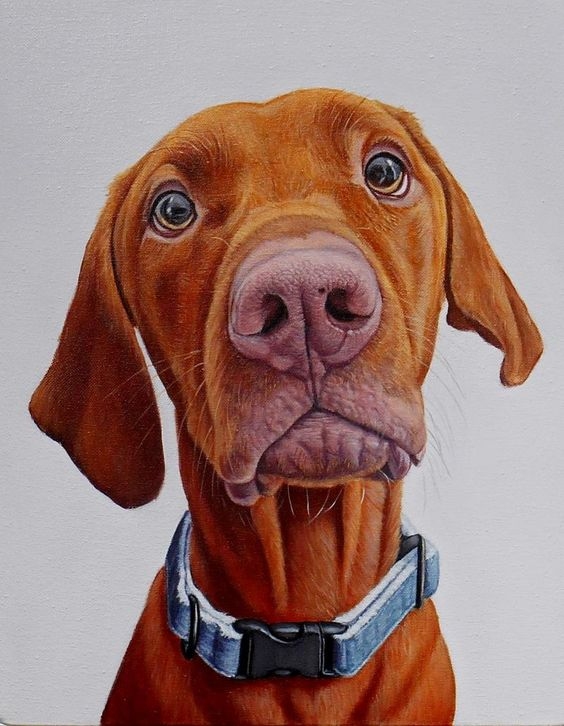 James Ruby Works - DOG PORTRAIT GALLERY - RECENT WORKThis page contains a…: