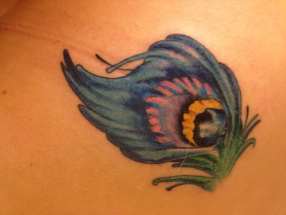 Peacock feather tattoo ... Left shoulder