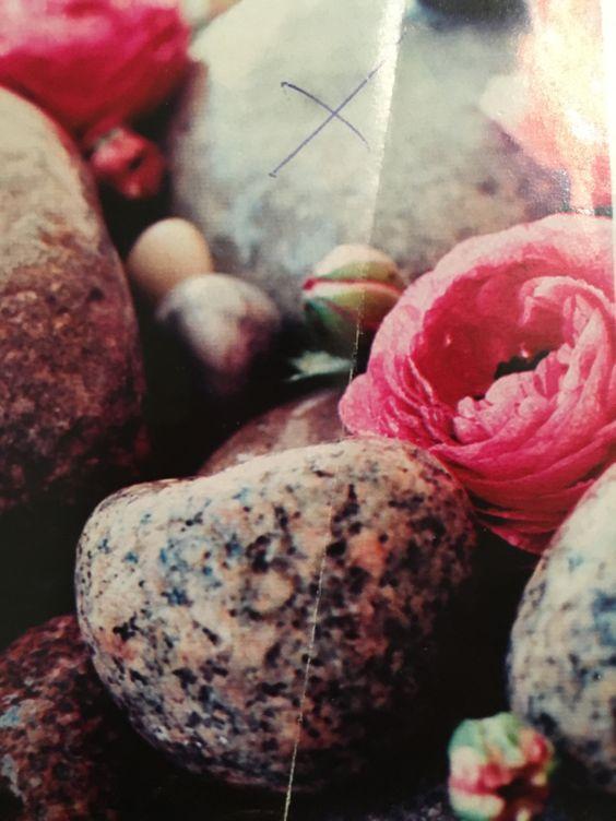 Steine+Blüten