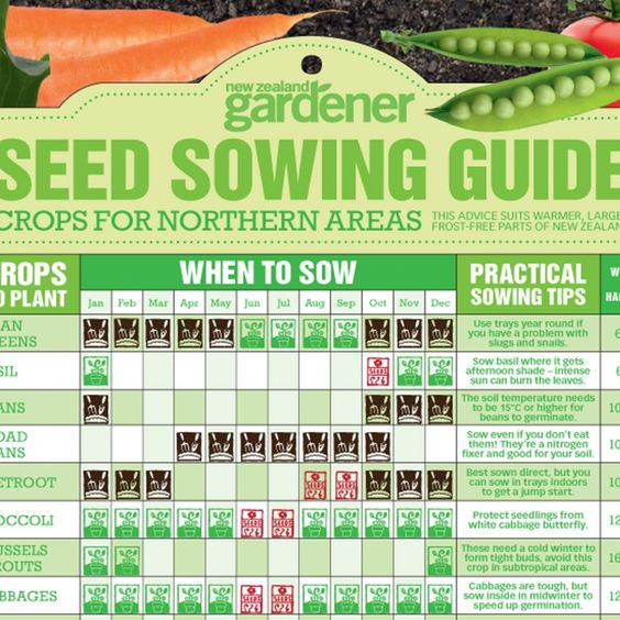 Seed Sowing Guide Nz Gardenernz Gardener Free Download Nature Calendars Pinterest Seeds
