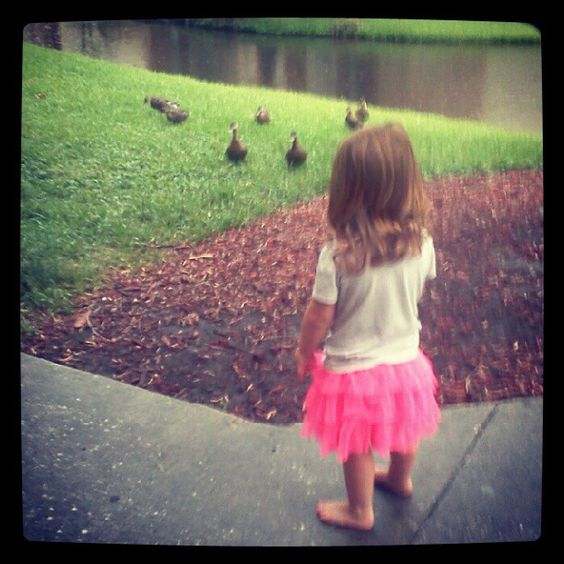 #feeding the #ducks! #kids #animals #water #pets #pink #tutu #outdoors #girls
