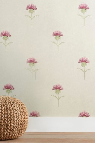 Buy Thistle Wallpaper From The Next Uk Online Shop