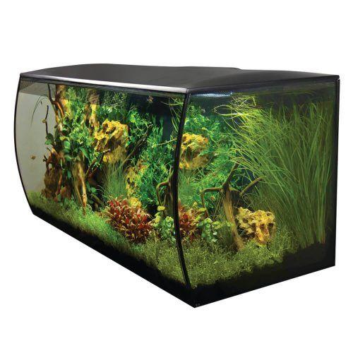 Fluval Flex Aquarium Kit 32 5 Us Gal 123 L Black In 2020 Aquarium Kit Aquarium Desktop Aquarium