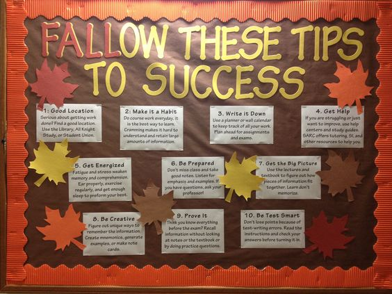 My November bulletin board on academics! I made it fall themed since we are in Florida and we don't really get much of a fall season. I also enjoy using puns. - RA life
