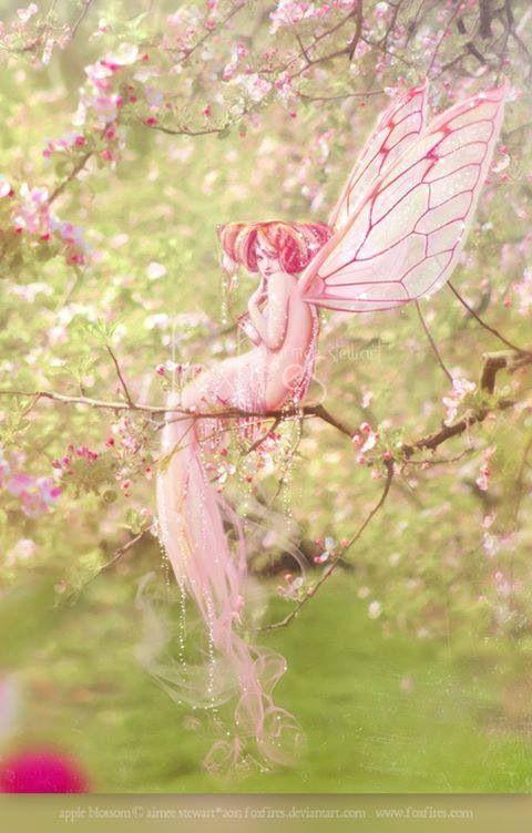 Pink fae: