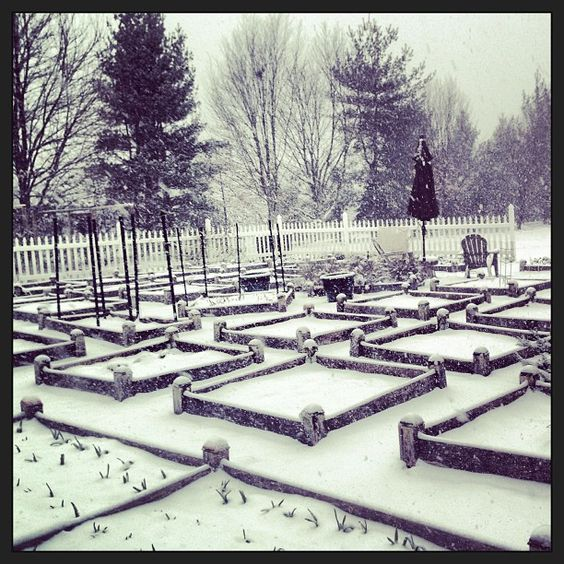 The vegetable garden under a blanket of snow.  Peaceful (1) From: Instagram, please visit