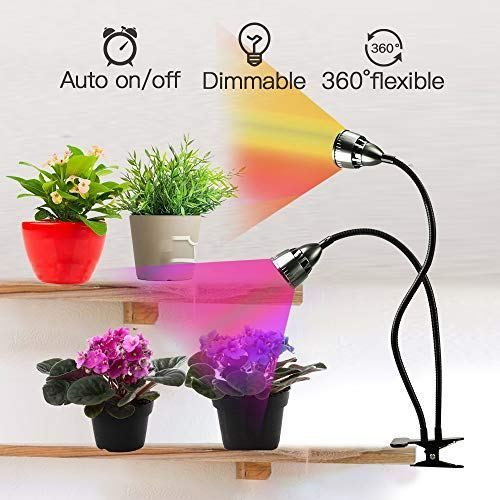 1517dd26b67bf765388bb066c93733e8 - What Are The Best Grow Lights For Indoor Gardening