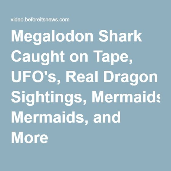 Megalodon Shark Caught on Tape, UFO's, Real Dragon Sightings, Mermaids, and More