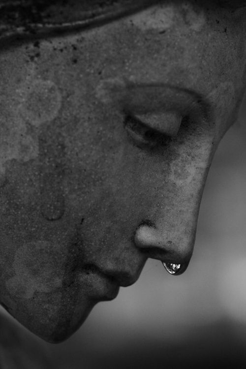 """"""" El ángel gritó a través de la lluvia en el cementerio de las almas, y cuando sus lágrimas cayeron en el suelo su dolor se sintió en varios corazones. """" f . wolff:"""