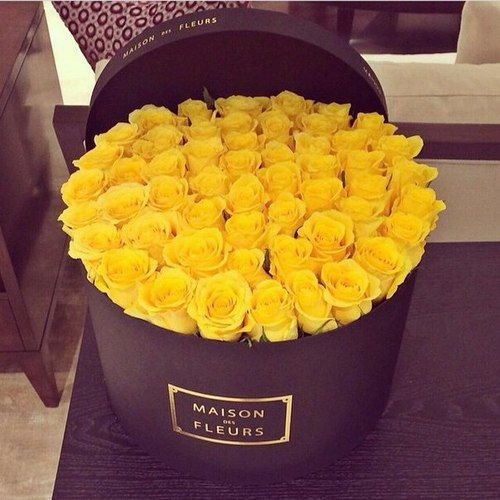 Przepiekne Roze Czy Wiesz Co Oznacza Kolor Stylroom Pl Flower Boxes Yellow Roses Rare Flowers