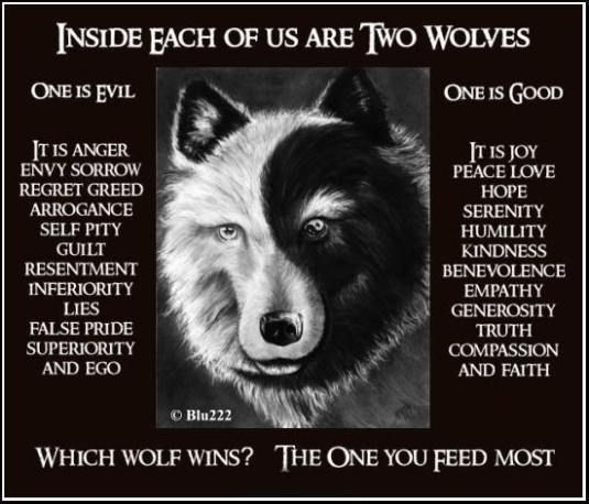 two wolves ... 152c9ce4b2aa07ba407bfbfc701566ce