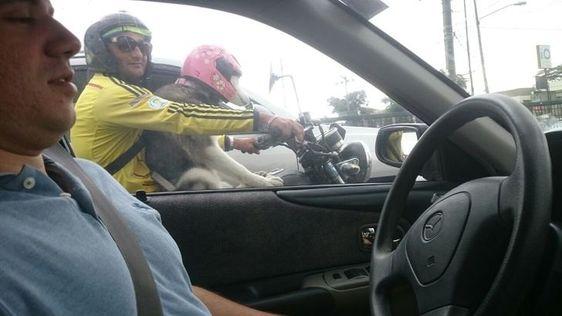 23 απίστευτα αστείες φωτογραφίες που συναντήσαμε στον δρόμο (Μέρος 2ο)