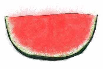 Watermelon - time to make sorbet