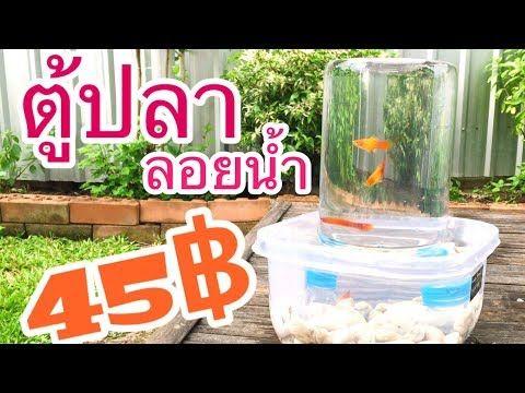 ต ปลาลอยน ำ 45 บาท Aorganic Youtube
